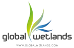 Global Wetlands